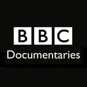 BBC (1 ТБ)